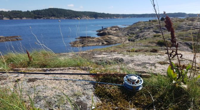 Sjøørret fiske Hvaler – Videodagbok
