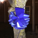 Donato Florist Selling Blue Bow Ribbons In Support Of Law Enforcement