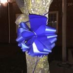 Donato Fleuriste vente Bleu Bow rubans à l'appui du application de la loi