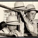 Lancaster PA, Amish farm boys at the livestock sale