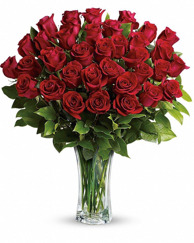 Fullsize Of The Forever Rose