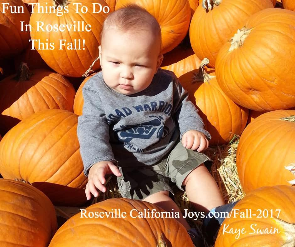 Happy Autumn! Fall Fun Things Do Roseville Area Roseville