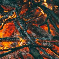 The Mann Gulch Fire