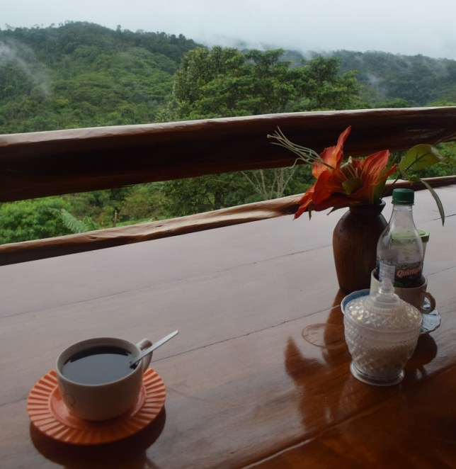 coffee and jungle view