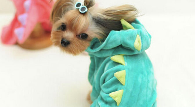 13 Dragon Dogs Who Can't Wait to See 'Pete's Dragon'