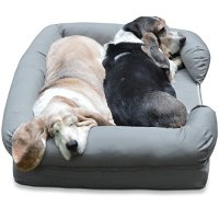 The Very Best Dog Beds for Large Dogs | Rover.com