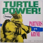 Partners In Kryme - Turtle Power 12'' Single