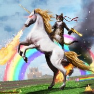 Cat with gun on a unicorn. Welcome to the internet. Please follow me.