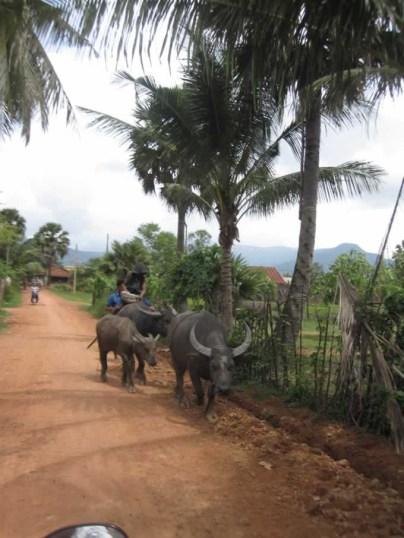 Kampot089