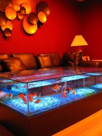 Aquarium Coffee Table For Sale | Roy Home Design