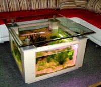 Coffee Table Aquarium For Sale | Roy Home Design