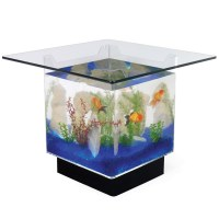 Fish Tank Coffee Table for Sale | Roy Home Design