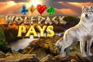 wolfpack-pays-slot-nextgen