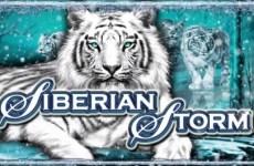 siberian-storm-slot