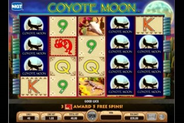 free casino games coyote moon