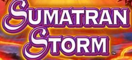New Slot Game: Kerching Launches Sumatran Storm Slot