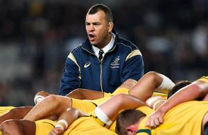 Michael Cheika will coach the Wallabies at the 2019 Rugby World Cup