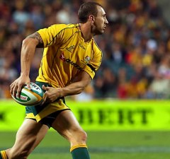 Wallabies coach Michael; Cheika wants Quade Cooper playing at home