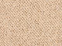 Hypoallergenic Carpeting - Carpet Vidalondon