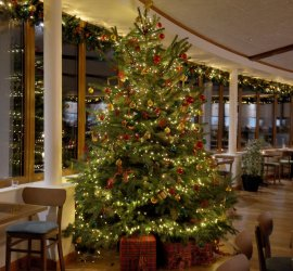 cafe-rumwell-christmas-tree-low-res-website