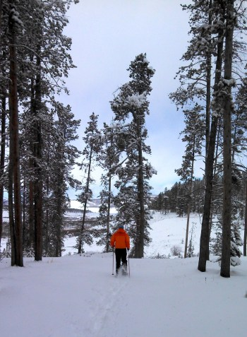Snowshoeing, Snowshoe, Colorado, Rocky Mountains