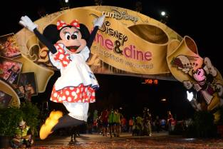 2013 Disney Wine & Dine Half Marathon, 2013 Disney Wine and Dine Half Marathon