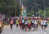 medio maraton atlas 2014