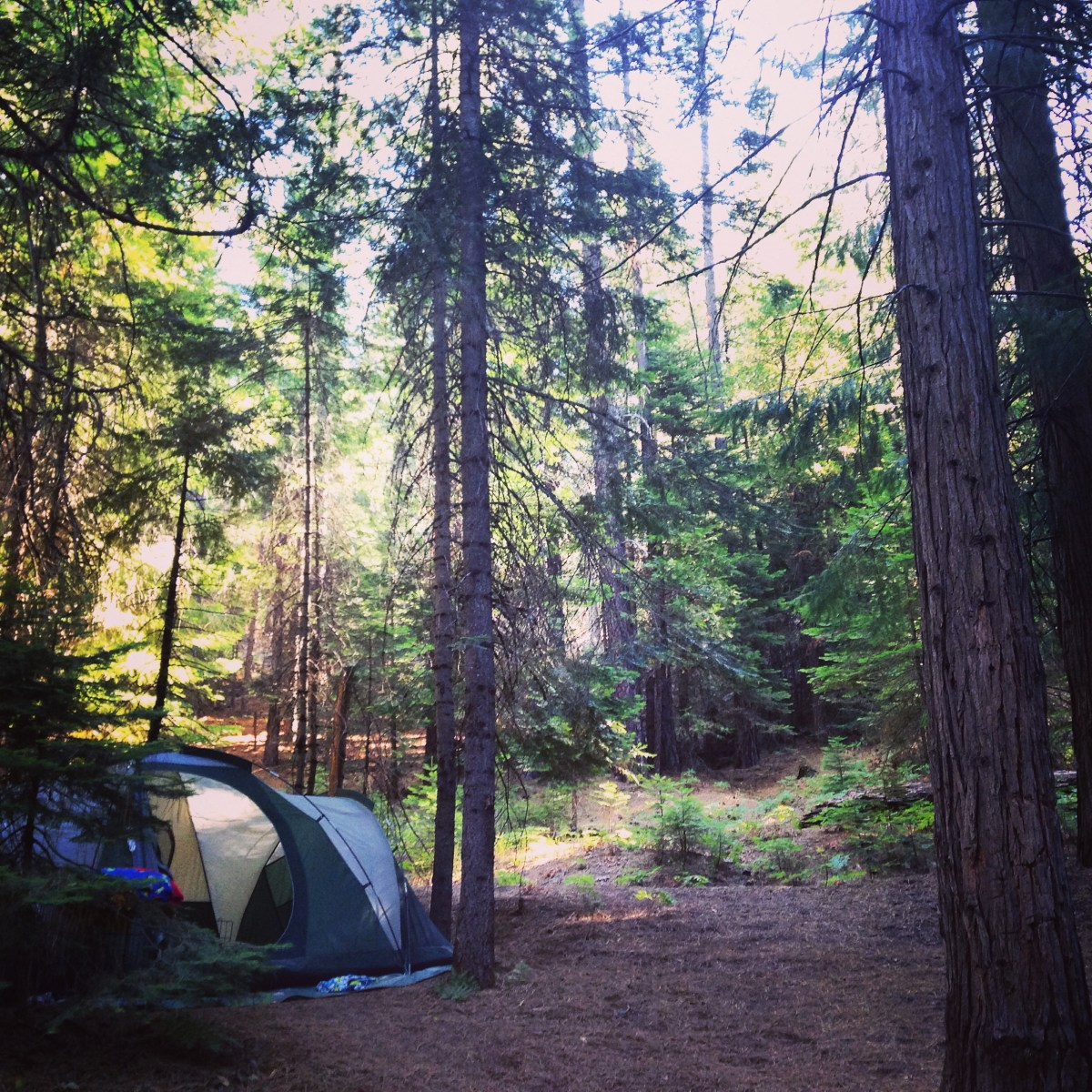 Camping and Exploring PiPi Campground