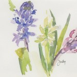 Watercolour painting. JBA017 Hyacinth Trio. Artist: Judy Barends
