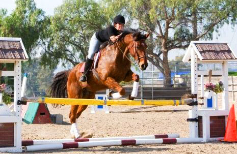 emily-ruocco-training-jumping