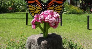 LEGO Connects with Nature in Myrtle Beach