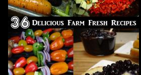 36 Farm Fresh Recipes to Try This Week