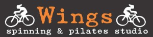 wings new logo 2015
