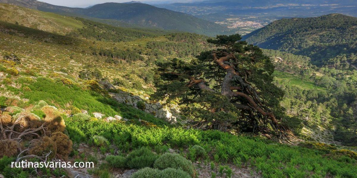 Rutas por el Valle del Tiétar