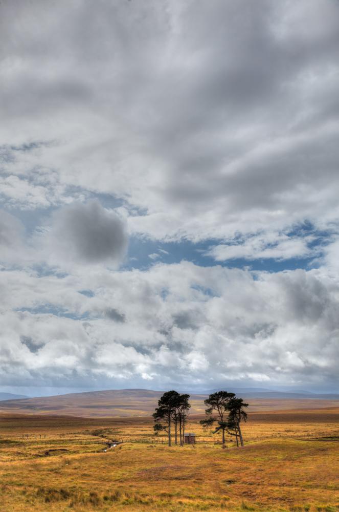 Helmsdale Sky