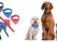 bandana-dog-collars-3pk-854232-1907902-small_lv