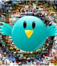 twitter-seguidores.jpg