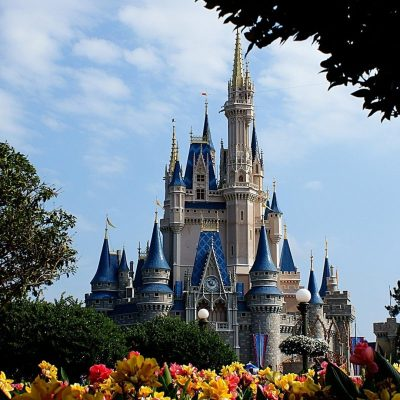 10 Latest Disney World Castle Wallpaper FULL HD 1080p For PC Background