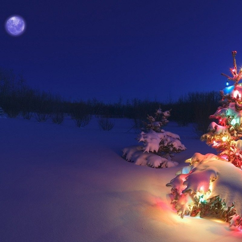 10 Most Popular Free Holiday Backgrounds For Desktop FULL HD 1080p