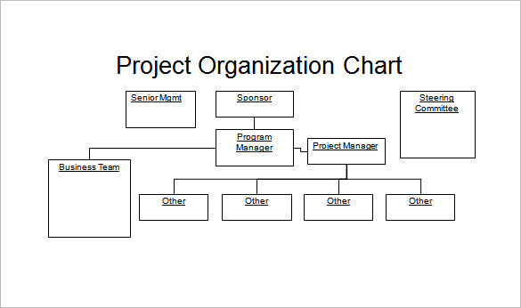 Project-Organization-PowerPoint-sample-chart-template-organizational