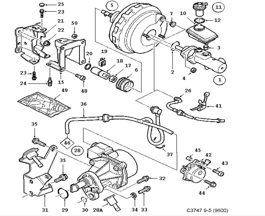 1981 toyota pickup vacuum diagram