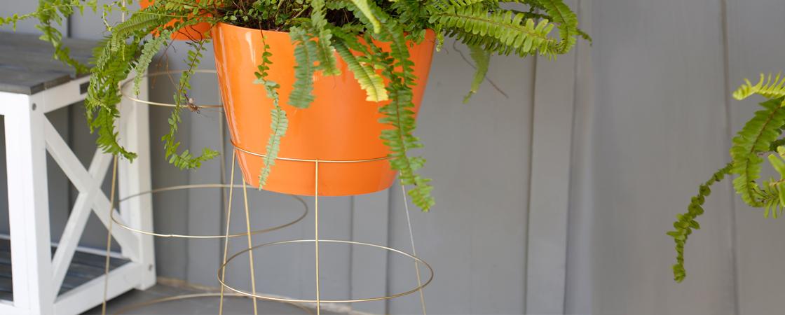 DIY: Tomato Cage Planter