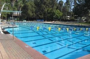 Swim club insurance
