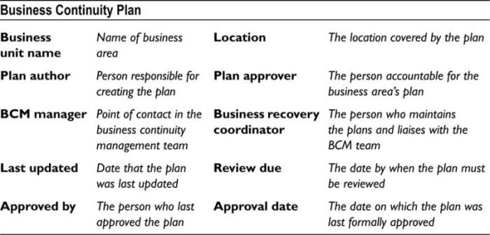APPENDIX H Basic Business Continuity Plan Template - Disaster