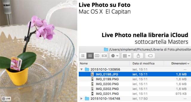 live-photos-folder