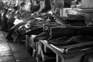 Cusco Fish Market