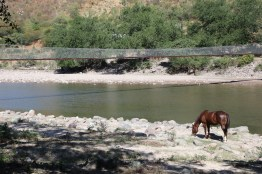 at the bottom of Urique Canyon