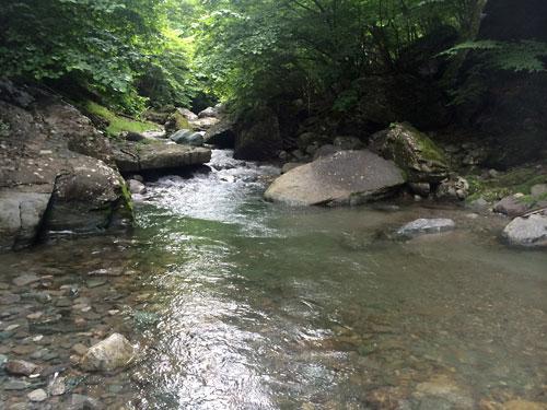 140709長谷小黒川05