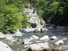 160807三峰川プロゴルファー猿2