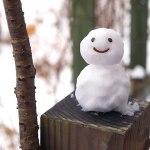 目が覚めたら白銀の世界だった|初雪2016